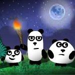 3 Pandas 2. Night