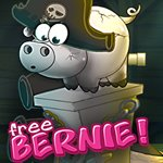 Free Bernie Pirates